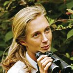 Jane Goodall: Bride of Gombe Photo