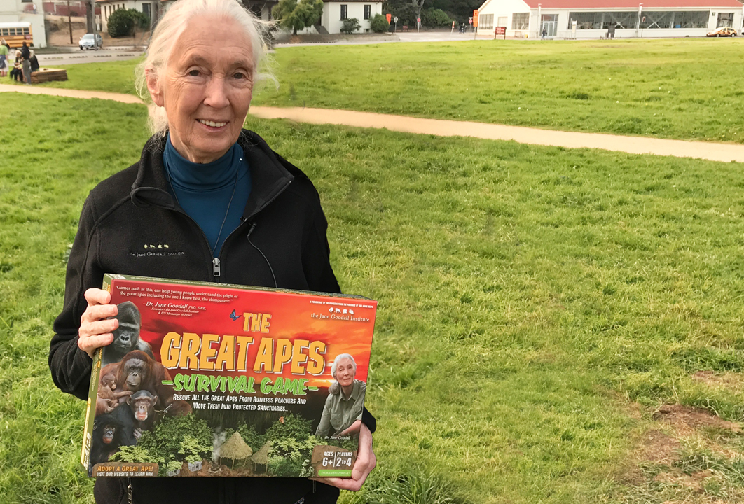 This is a photo of Dr. Jane Goodall holding the Great Apes Survival Game